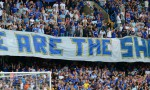 We are the Shed